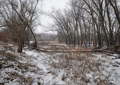 43 Acres for Sale in Black Hawk County, Iowa