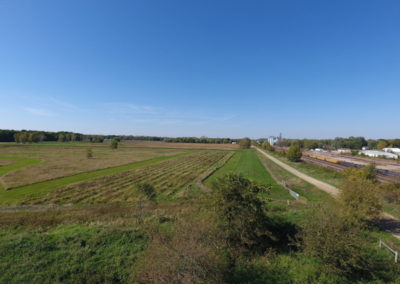 146 Acres For Sale | Tama County, Iowa