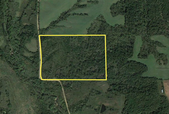 60 Acres Monroe County, IA | Hunting Land