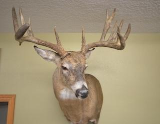 $221,000 | 201 Acres Tama County
