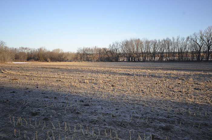 73 Acres of Iowa Farm Land for Sale | Butler County
