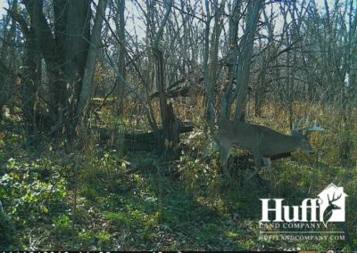 160 Acres for Sale in Butler County, Iowa