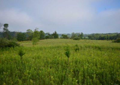 72 Acres | Butler County, Iowa