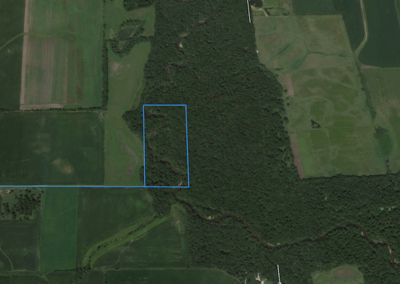 Bremer County Iowa | 20 Acres for Sale