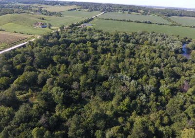 31 Acres | Butler County, Iowa