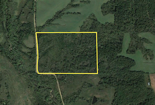 60 Acres North | Monroe County | Iowa Hunting Land For Sale