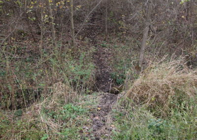 10 Acres Allamakee County | Iowa Hunting Land For Sale