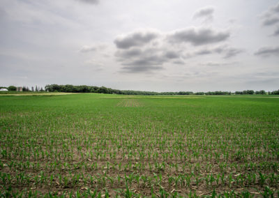 136 Acres | Butler County Farmland For Sale