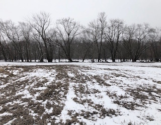 $125,000 | 30 Acres Butler County
