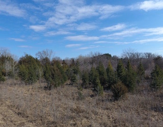 $125,000 | 3 Acres M/L Butler County
