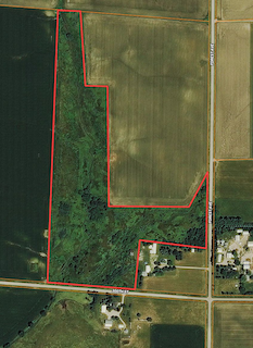 40 Acres Butler County | Iowa Farmland For Sale | Huff Land Company