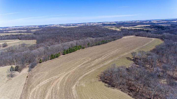 203 Acres Allamakee County | Iowa Land for Sale