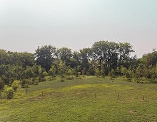 221 Acres for Sale   Benton County, Iowa