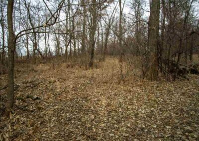 212th Street Waverly | Acreage Building Lot for Sale | Huff Land Co.