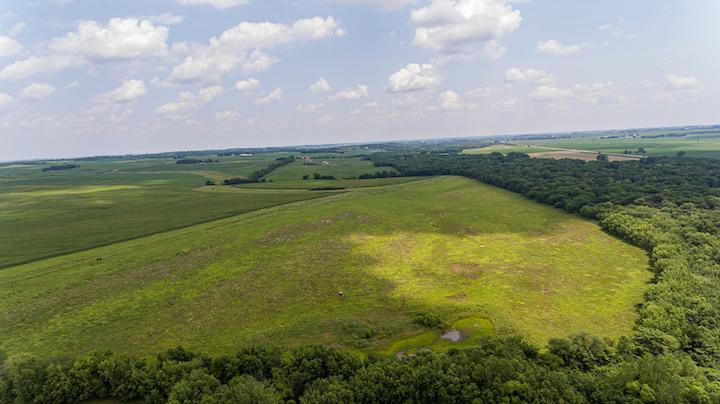 78 Acres | Butler County, Iowa