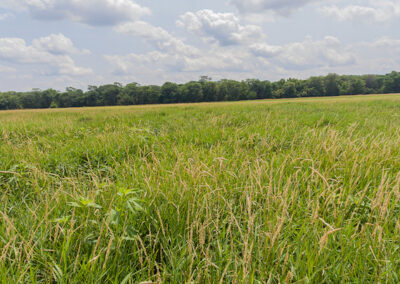 Butler County Hunting Land | For Sale | Huff Land Company