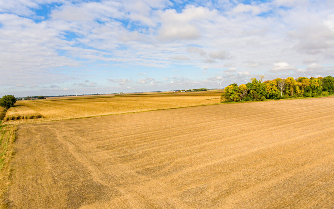 Land Auction | 233 Acres for Sale in Osage, Iowa